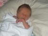 Baby_vaughn